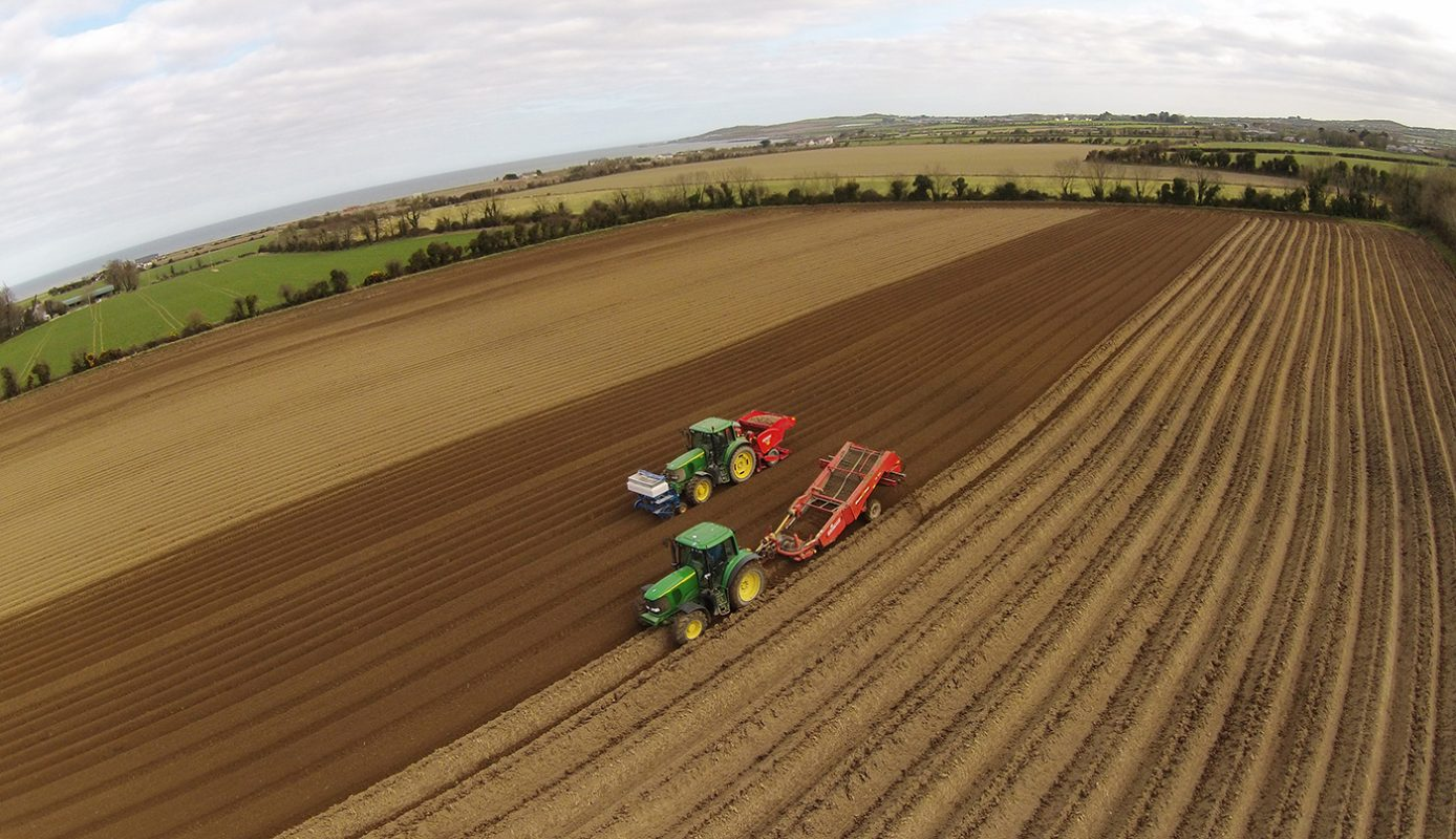 Image of Durnins potatoes being planted in Glougherhead